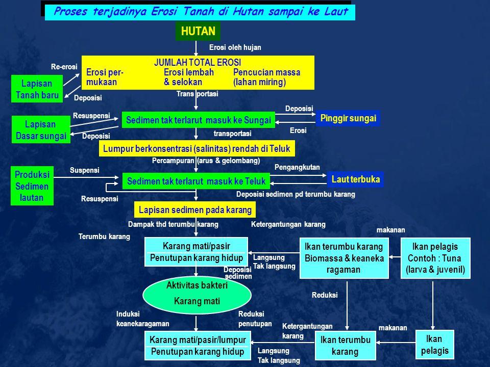 KENDALA DAN PERMASALAHAN 1. Kerusakan habitat ekosistem pesisir  LIPI : ~ 60% sudah rusak 2. Mengeksploitasi sumberdaya hayati laut 3. Pencemaran 4.