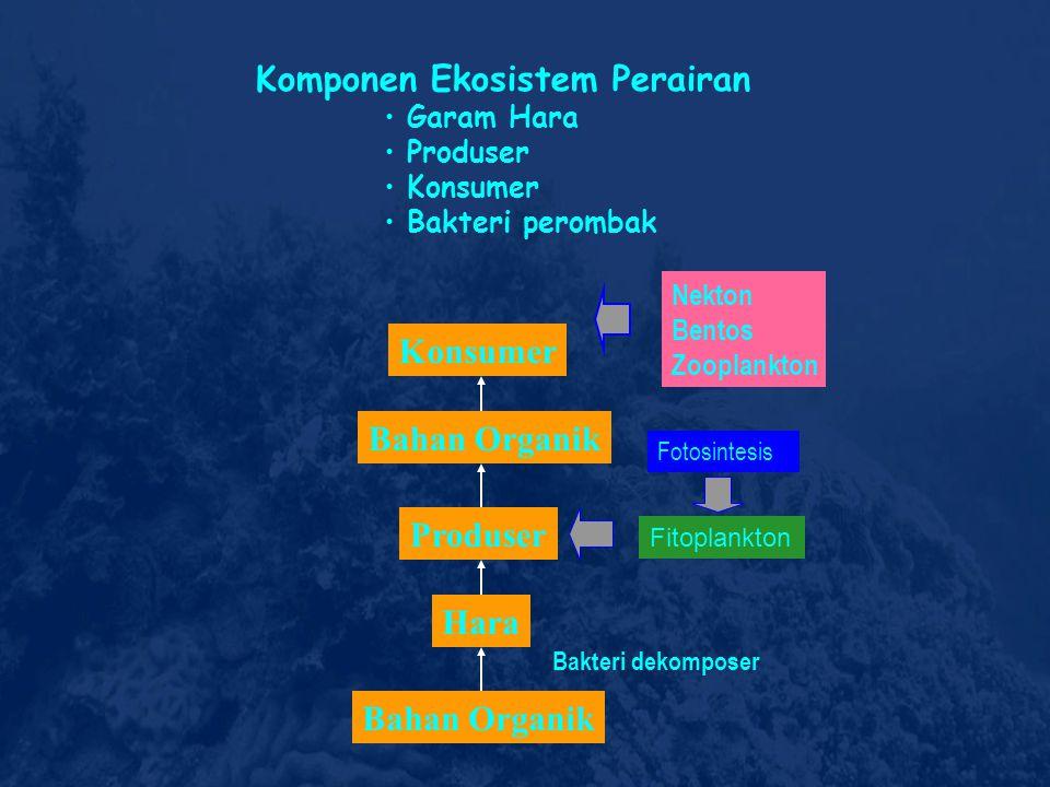 ARTI STRATEGIS DAN ANTISIPATIF SUMBERDAYA PESISIR DAN LAUT:  Rasio Geografis Wilayah Maritim vs Terestrial Indonesia - Pulau : 17.528, - Pantai : 81
