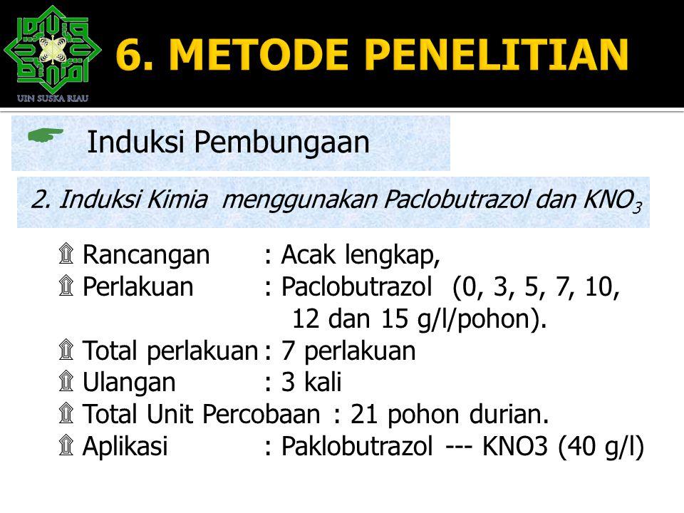  Induksi Pembungaan 2. Induksi Kimia menggunakan Paclobutrazol dan KNO 3 ۩ Rancangan : Acak lengkap, ۩ Perlakuan : Paclobutrazol (0, 3, 5, 7, 10, 12