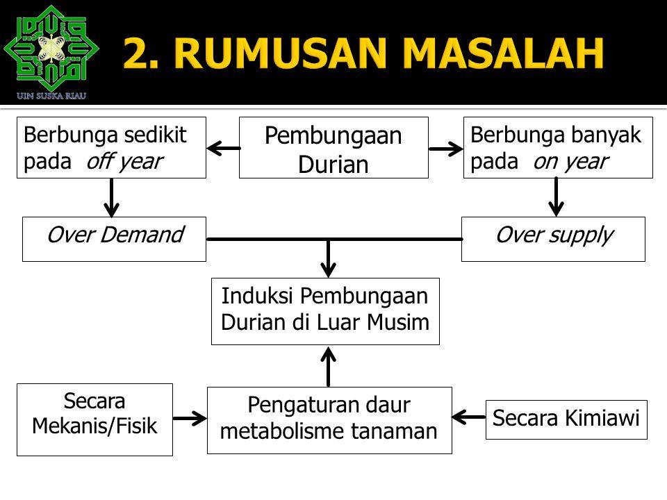 Pembungaan Durian Berbunga banyak pada on year Induksi Pembungaan Durian di Luar Musim Berbunga sedikit pada off year Over supplyOver Demand Pengatura