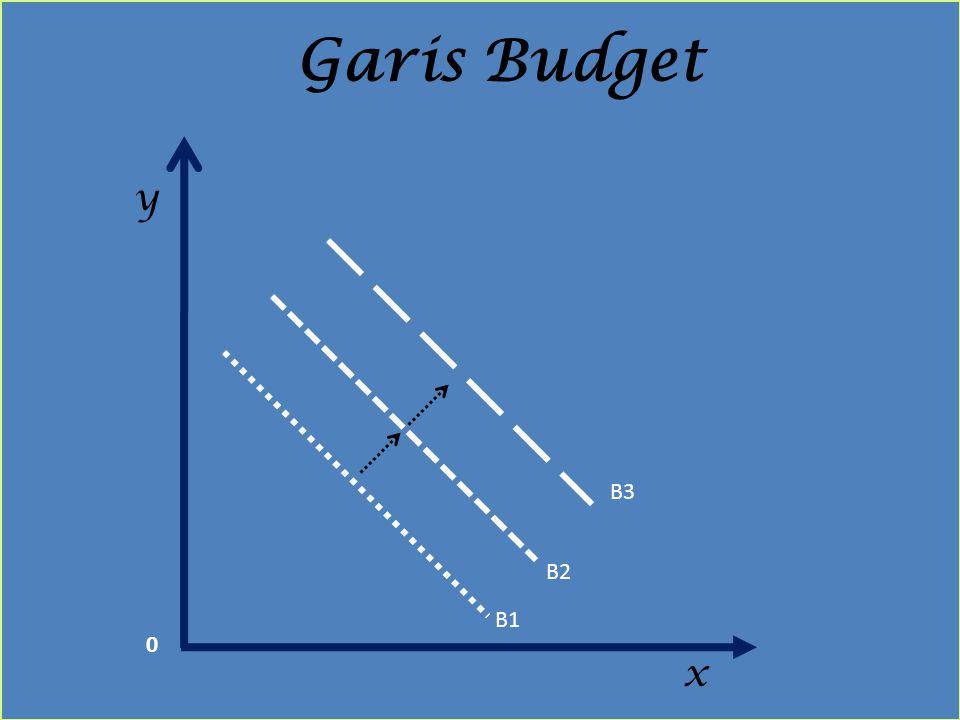 x y Garis Budget B1 B2 B3 0