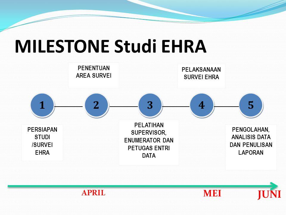 MILESTONE Studi EHRA PERSIAPAN STUDI /SURVEI EHRA PENENTUAN AREA SURVEI PELATIHAN SUPERVISOR, ENUMERATOR DAN PETUGAS ENTRI DATA PELAKSANAAN SURVEI EHR