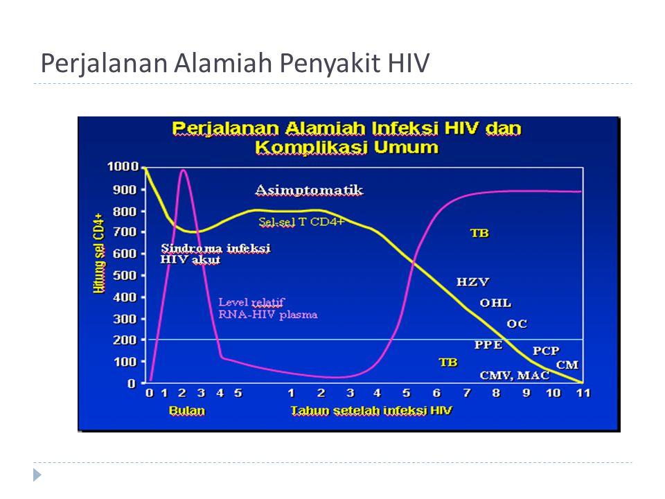 Perjalanan Alamiah Penyakit HIV