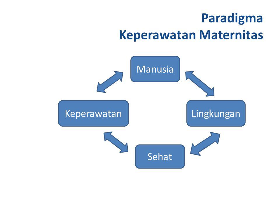 Paradigma Keperawatan Maternitas Lingkungan Manusia Sehat Keperawatan