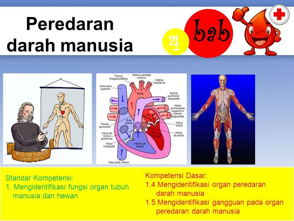 Peredaran darah manusia bab 4 Kompetensi Dasar: 1.4 Mengidentifikasi organ peredaran darah manusia 1.5 Mengidentifikasi gangguan pada organ peredaran