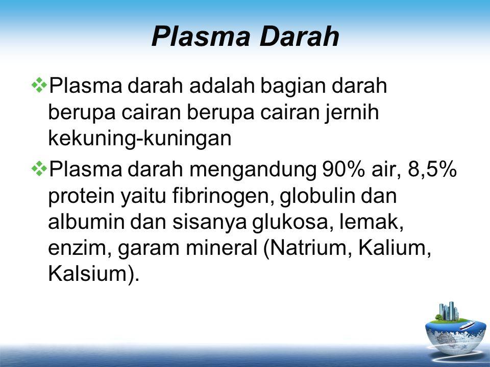 Plasma Darah  Plasma darah adalah bagian darah berupa cairan berupa cairan jernih kekuning-kuningan  Plasma darah mengandung 90% air, 8,5% protein y