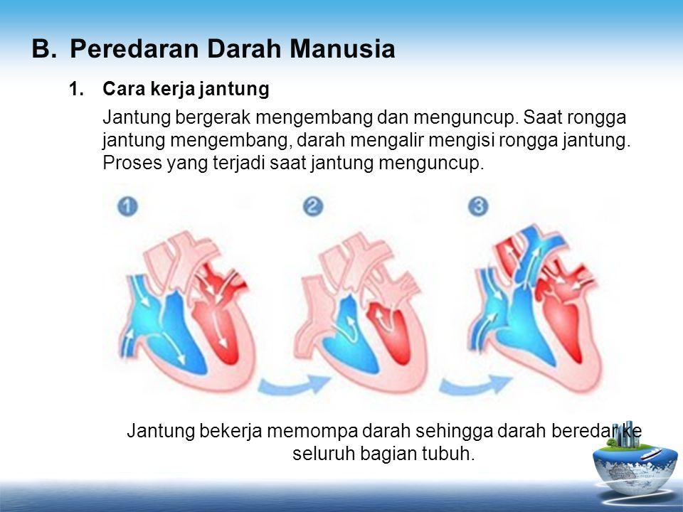 1.Cara kerja jantung Jantung bergerak mengembang dan menguncup. Saat rongga jantung mengembang, darah mengalir mengisi rongga jantung. Proses yang ter