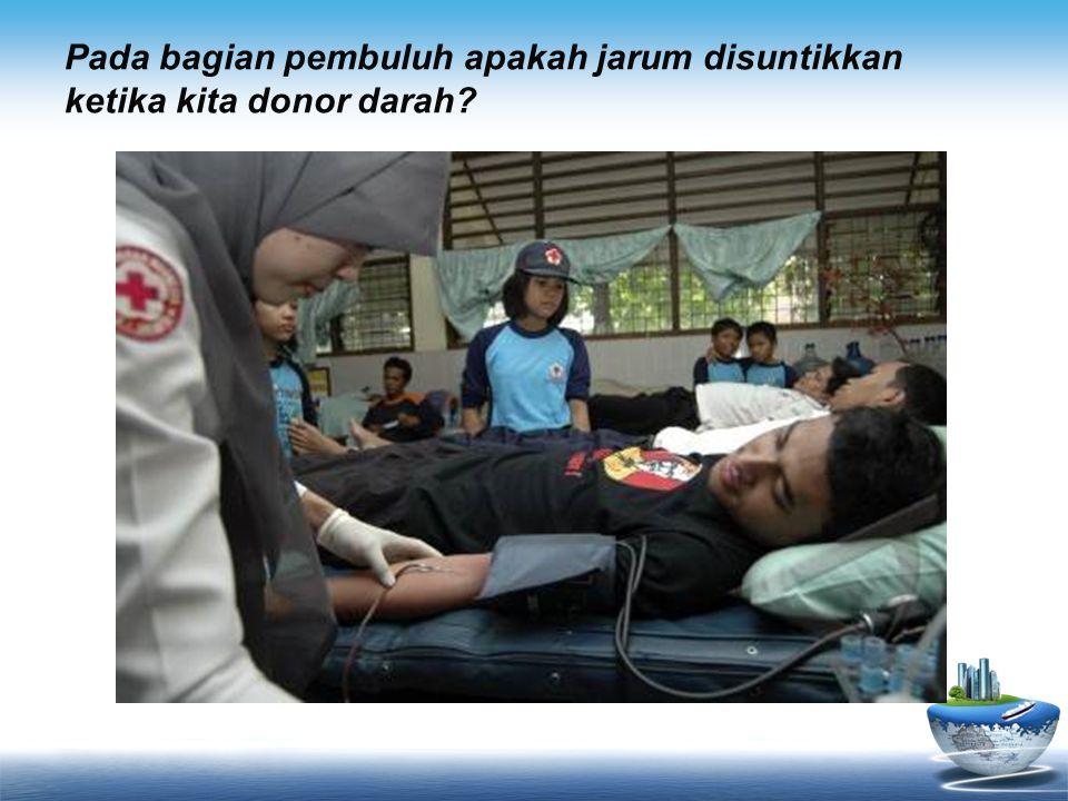 Pada bagian pembuluh apakah jarum disuntikkan ketika kita donor darah?