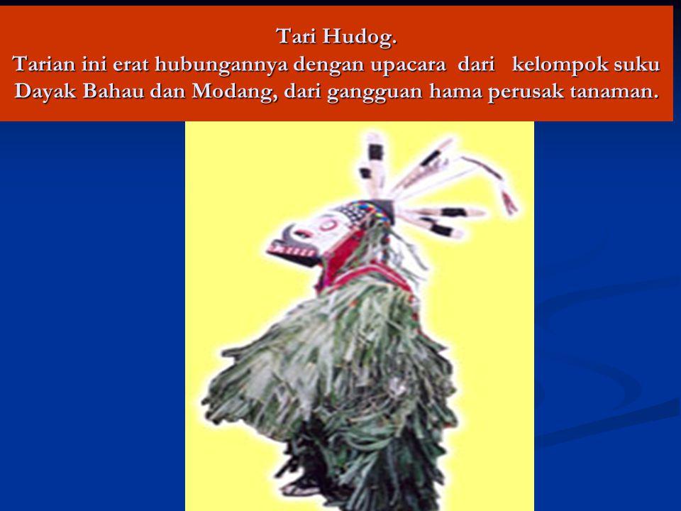 Tari Hudog. Tarian ini erat hubungannya dengan upacara dari kelompok suku Dayak Bahau dan Modang, dari gangguan hama perusak tanaman.