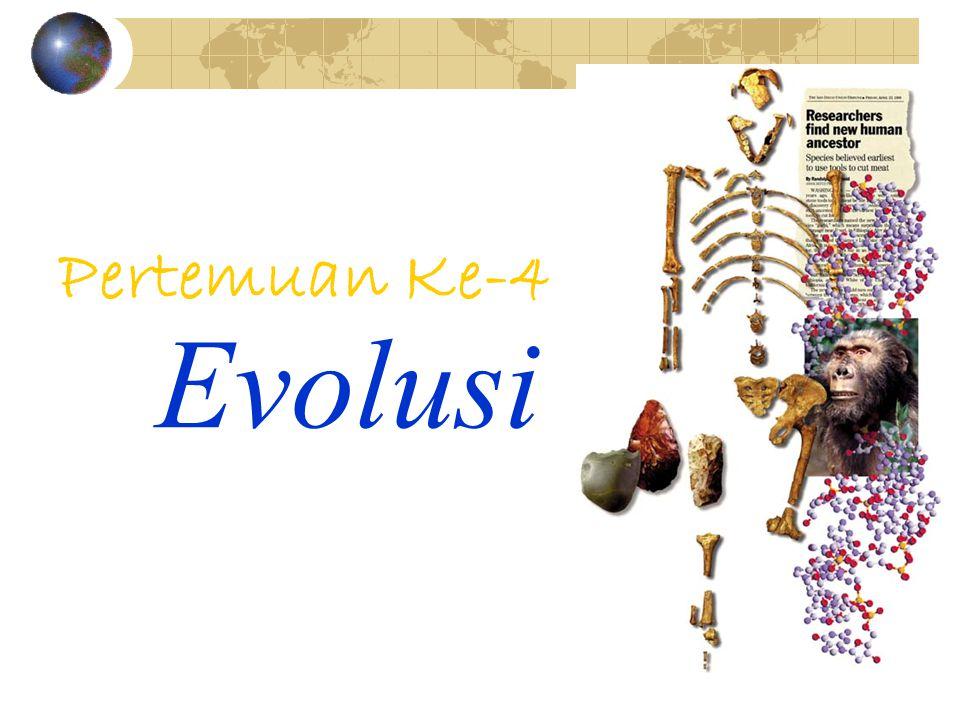 Evolusi Pertemuan Ke-4