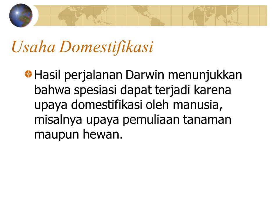Usaha Domestifikasi Hasil perjalanan Darwin menunjukkan bahwa spesiasi dapat terjadi karena upaya domestifikasi oleh manusia, misalnya upaya pemuliaan