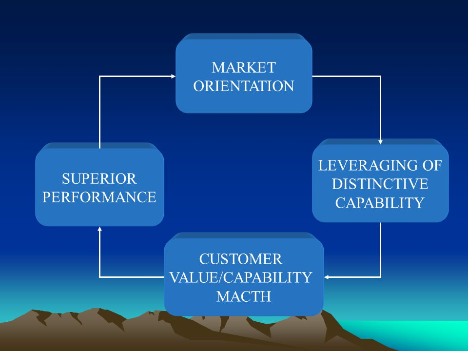 MARKET ORIENTATION SUPERIOR PERFORMANCE CUSTOMER VALUE/CAPABILITY MACTH LEVERAGING OF DISTINCTIVE CAPABILITY