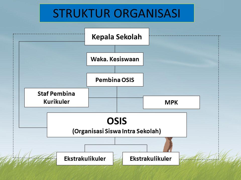 STRUKTUR ORGANISASI Kepala Sekolah Waka.