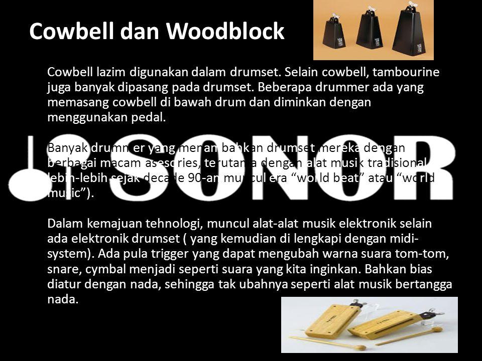 Cowbell dan Woodblock Cowbell lazim digunakan dalam drumset. Selain cowbell, tambourine juga banyak dipasang pada drumset. Beberapa drummer ada yang m