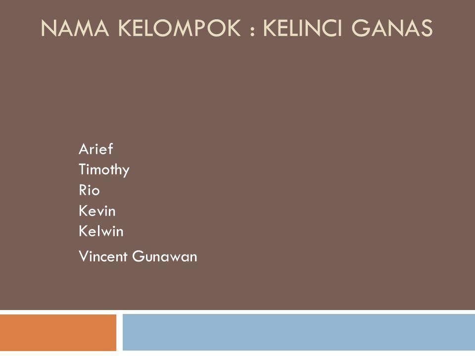 NAMA KELOMPOK : KELINCI GANAS Arief Timothy Rio Kevin Kelwin Vincent Gunawan
