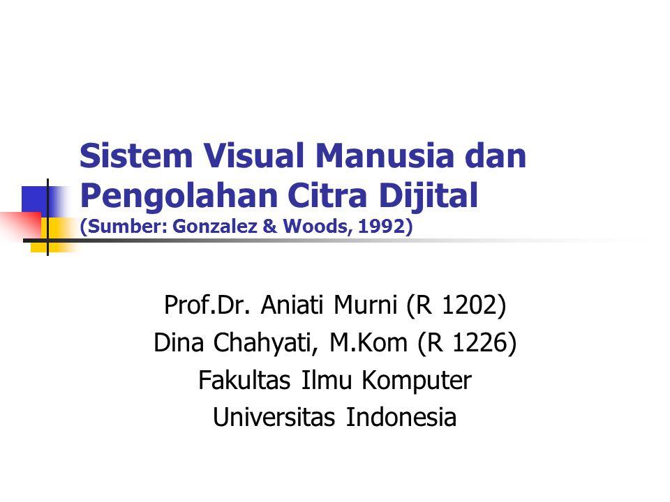 Sistem Visual Manusia dan Pengolahan Citra Dijital (Sumber: Gonzalez & Woods, 1992) Prof.Dr.