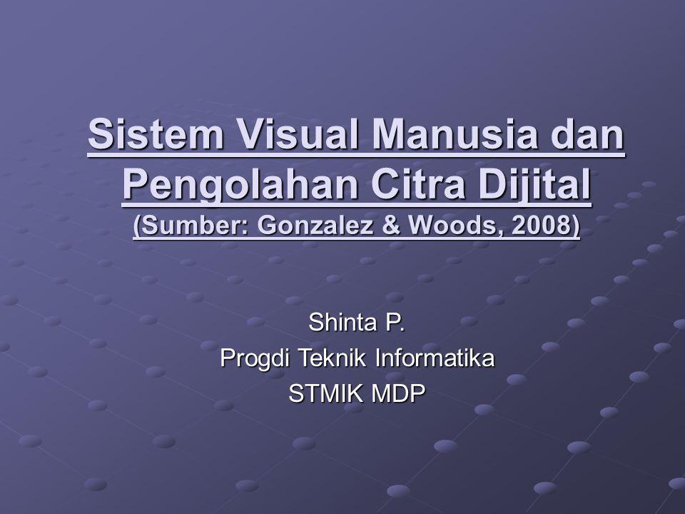 Sistem Visual Manusia dan Pengolahan Citra Dijital (Sumber: Gonzalez & Woods, 2008) Shinta P. Progdi Teknik Informatika STMIK MDP