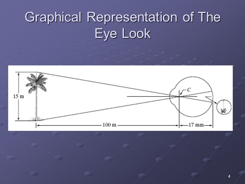 4 Graphical Representation of The Eye Look