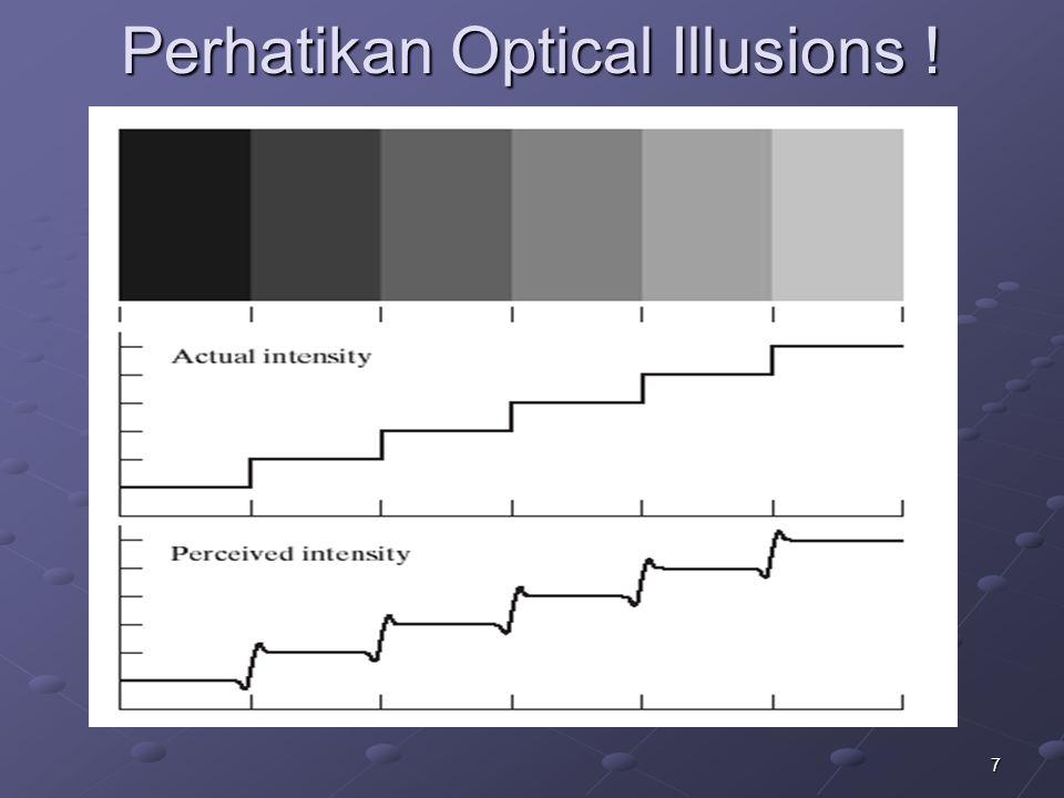 7 Perhatikan Optical Illusions !