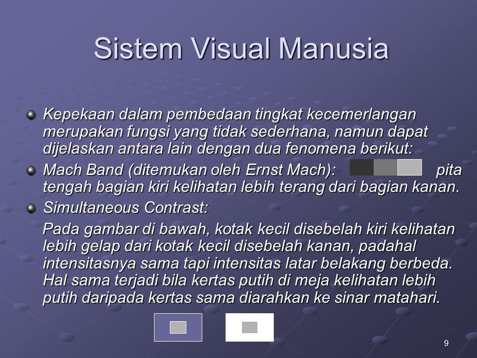 9 Sistem Visual Manusia Kepekaan dalam pembedaan tingkat kecemerlangan merupakan fungsi yang tidak sederhana, namun dapat dijelaskan antara lain denga