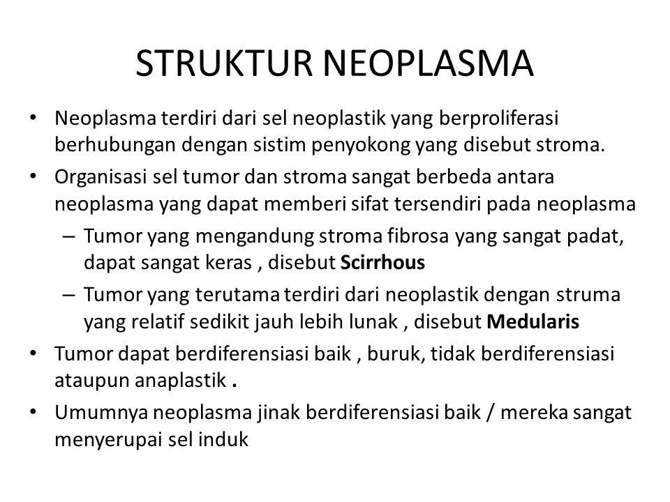 STRUKTUR NEOPLASMA Neoplasma ganas diferensiasinya menduduki spektrum yang luas, dimana kanker destruktif sangat agresif berdiferensiasi buruk / anaplastik Pada banyak kasus neoplasma ganas sel-sel secara individual menunjukkan kelainan morfologis yang mencerminkan potensi sel ganas Banyak sel kanker mempunyai perbandingan volume nukleus terhadap volume plasma yang sudah berubah, bentuk nukleus tidak teratur,dan pola kromatin yang tidak teratur.