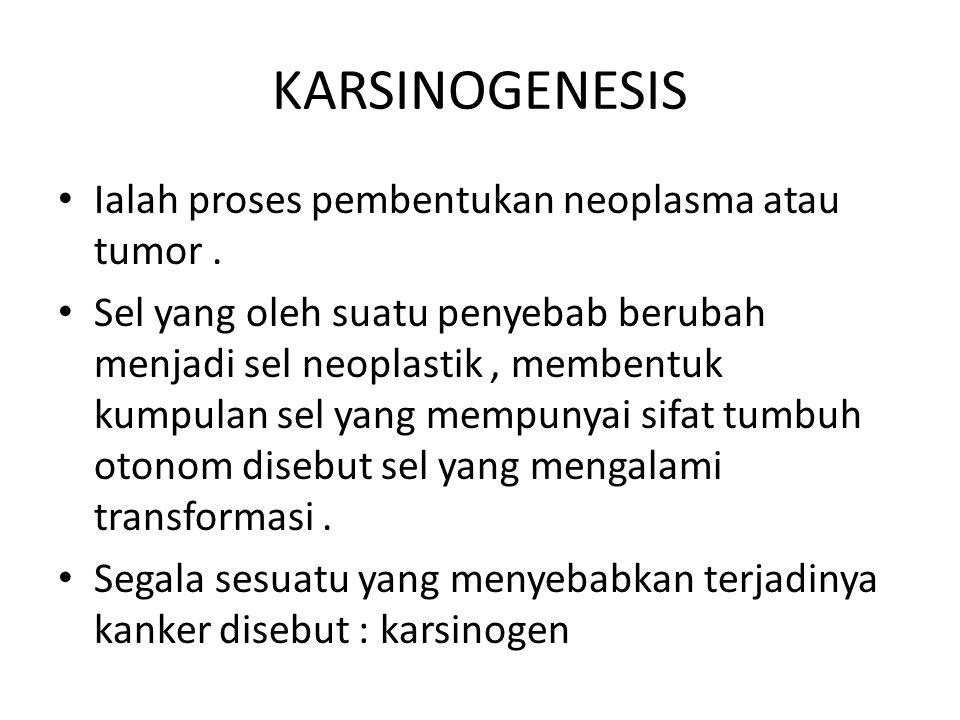 KARSINOGENESIS Ialah proses pembentukan neoplasma atau tumor. Sel yang oleh suatu penyebab berubah menjadi sel neoplastik, membentuk kumpulan sel yang