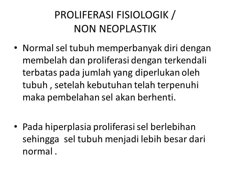PROLIFERASI FISIOLOGIK / NON NEOPLASTIK Normal sel tubuh memperbanyak diri dengan membelah dan proliferasi dengan terkendali terbatas pada jumlah yang