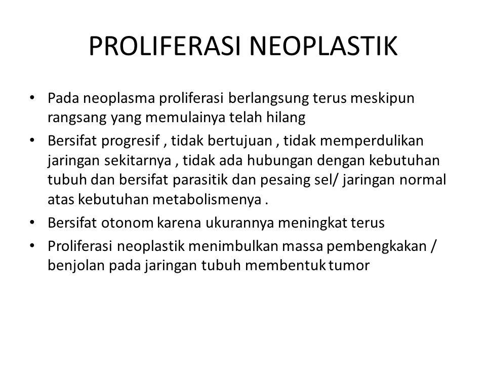 PROLIFERASI NEOPLASTIK Pada neoplasma proliferasi berlangsung terus meskipun rangsang yang memulainya telah hilang Bersifat progresif, tidak bertujuan