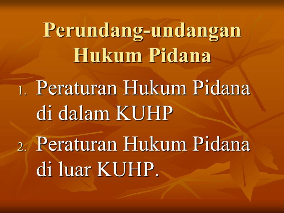 Perundang-undangan Hukum Pidana 1. Peraturan Hukum Pidana di dalam KUHP 2. Peraturan Hukum Pidana di luar KUHP.