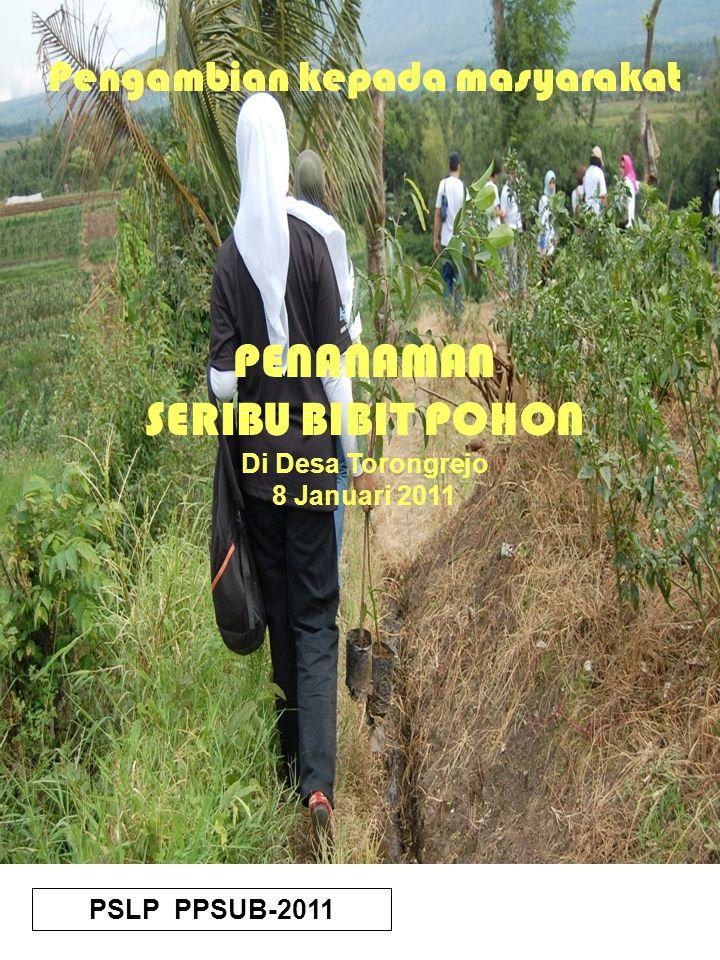 PM-PSLP PPSUB MALANG-2010 PSLP PPSUB-2011 Pengambian kepada masyarakat PENANAMAN SERIBU BIBIT POHON Di Desa Torongrejo 8 Januari 2011