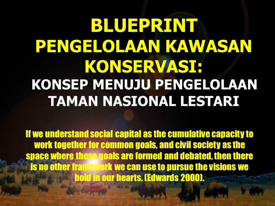 BLUEPRINT PENGELOLAAN KAWASAN KONSERVASI: KONSEP MENUJU PENGELOLAAN TAMAN NASIONAL LESTARI If we understand social capital as the cumulative capacity