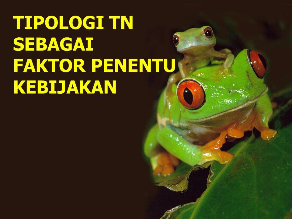 TIPOLOGI TN SEBAGAI FAKTOR PENENTU KEBIJAKAN