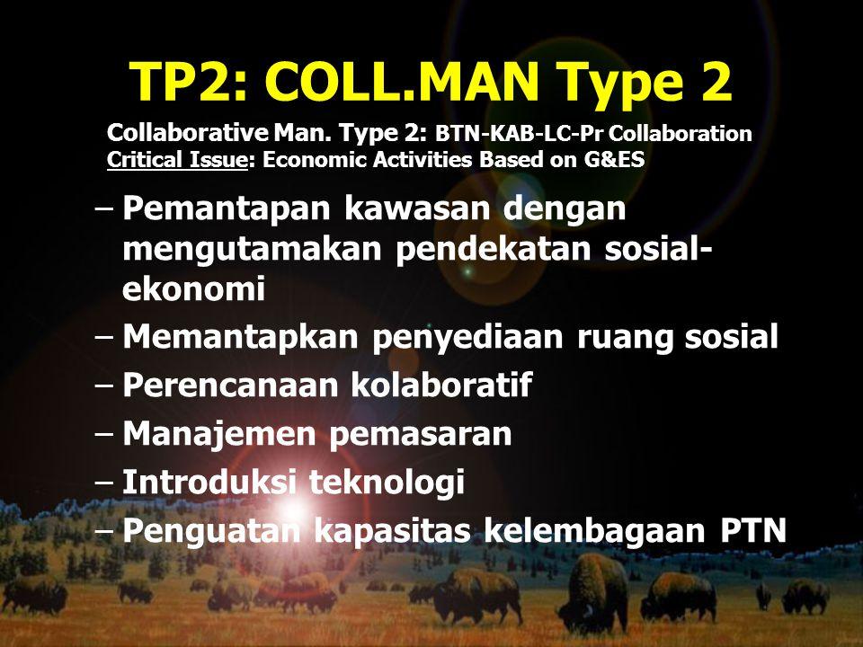 TP2: COLL.MAN Type 2 –Pemantapan kawasan dengan mengutamakan pendekatan sosial- ekonomi –Memantapkan penyediaan ruang sosial –Perencanaan kolaboratif