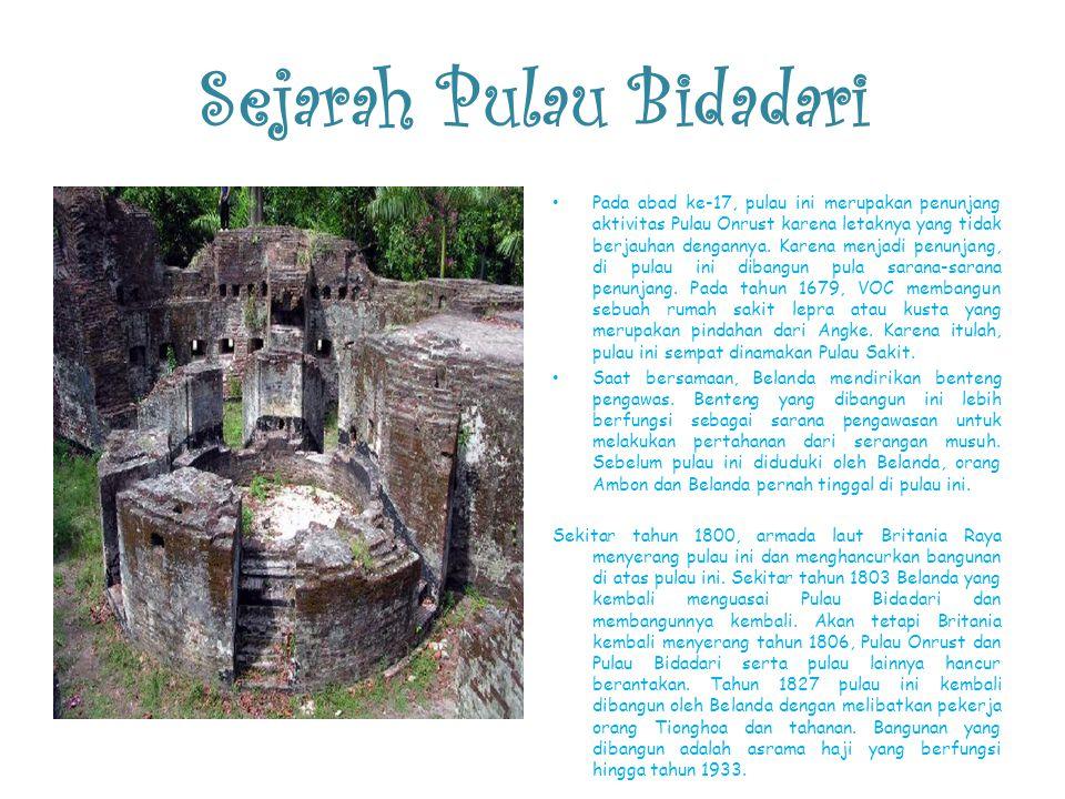 Sejarah Pulau Bidadari Pada abad ke-17, pulau ini merupakan penunjang aktivitas Pulau Onrust karena letaknya yang tidak berjauhan dengannya. Karena me
