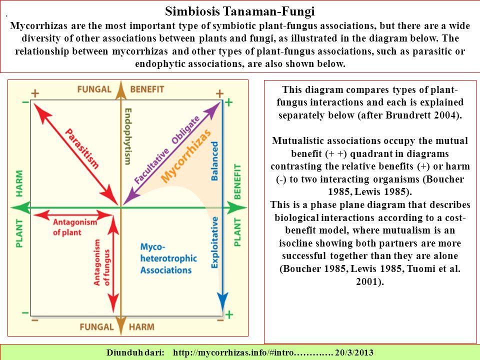 Diunduh dari: http://mycorrhizas.info/#intro…………. 20/3/2013 Simbiosis Tanaman-Fungi Mycorrhizas are the most important type of symbiotic plant-fungus