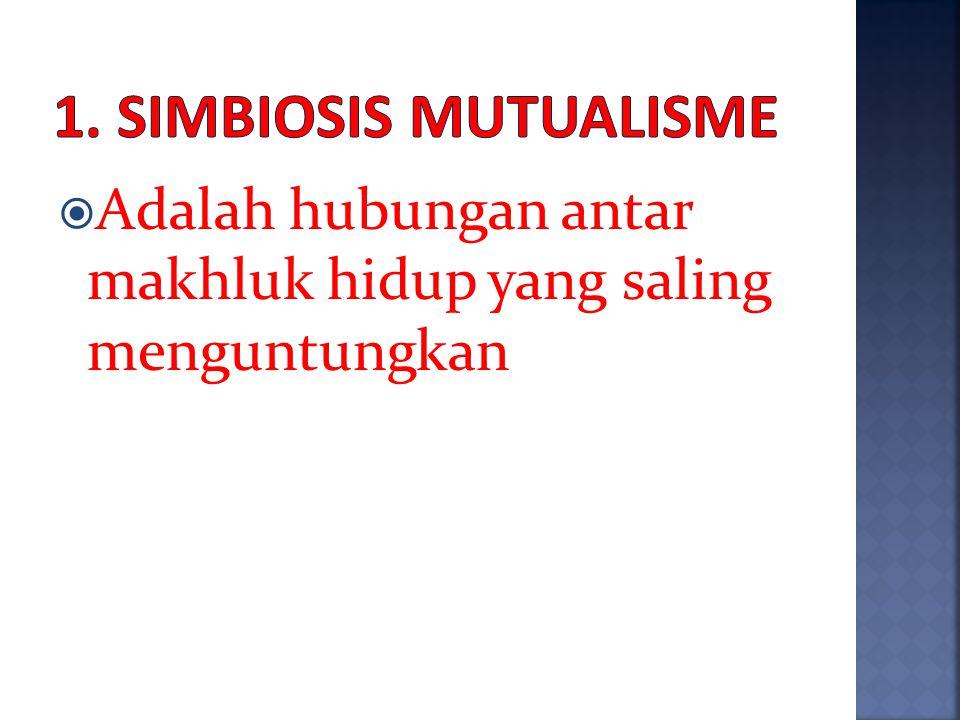 Ada 3 jenis simbiosis yaitu : 1. Simbiosis mutualisme 2. Simbiosis komensalisme 3. Simbiosis parasitisme