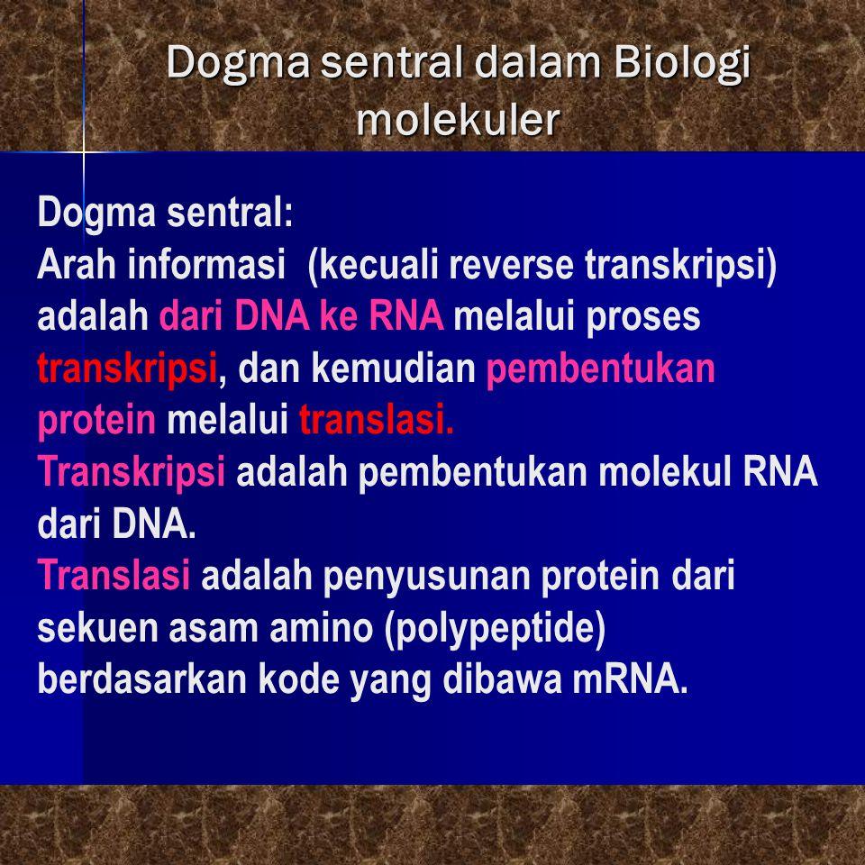 Dogma sentral dalam Biologi molekuler Dogma sentral: Arah informasi (kecuali reverse transkripsi) adalah dari DNA ke RNA melalui proses transkripsi, d