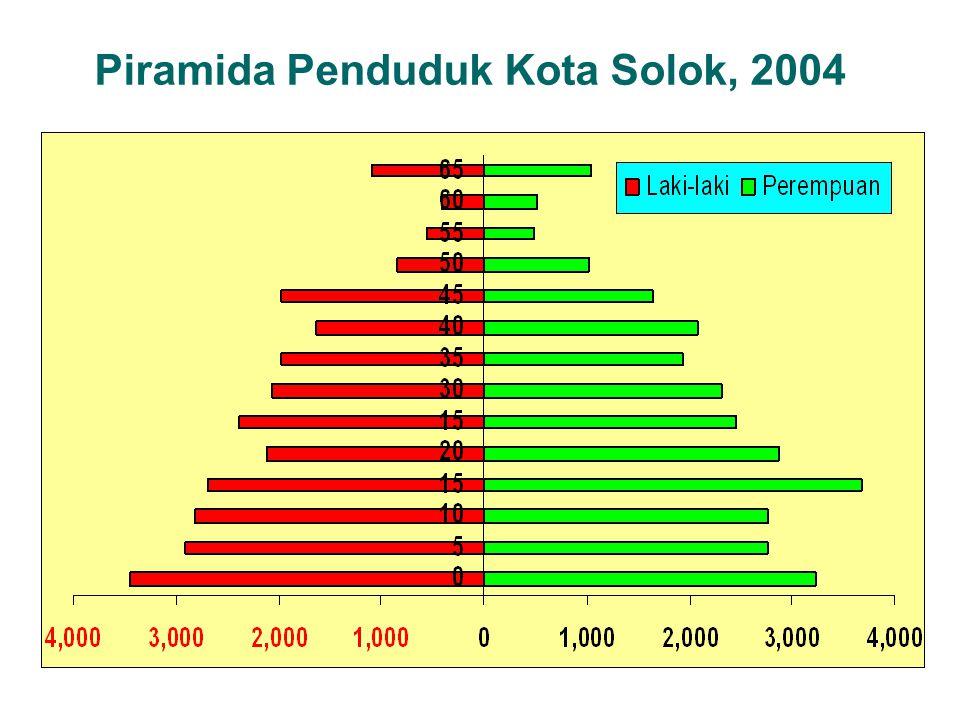 Piramida Penduduk Kota Solok, 2004