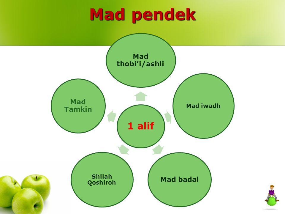 Mad pendek 1 alif Mad thobi'i/ashli Mad iwadh Mad badal Shilah Qoshiroh Mad Tamkin