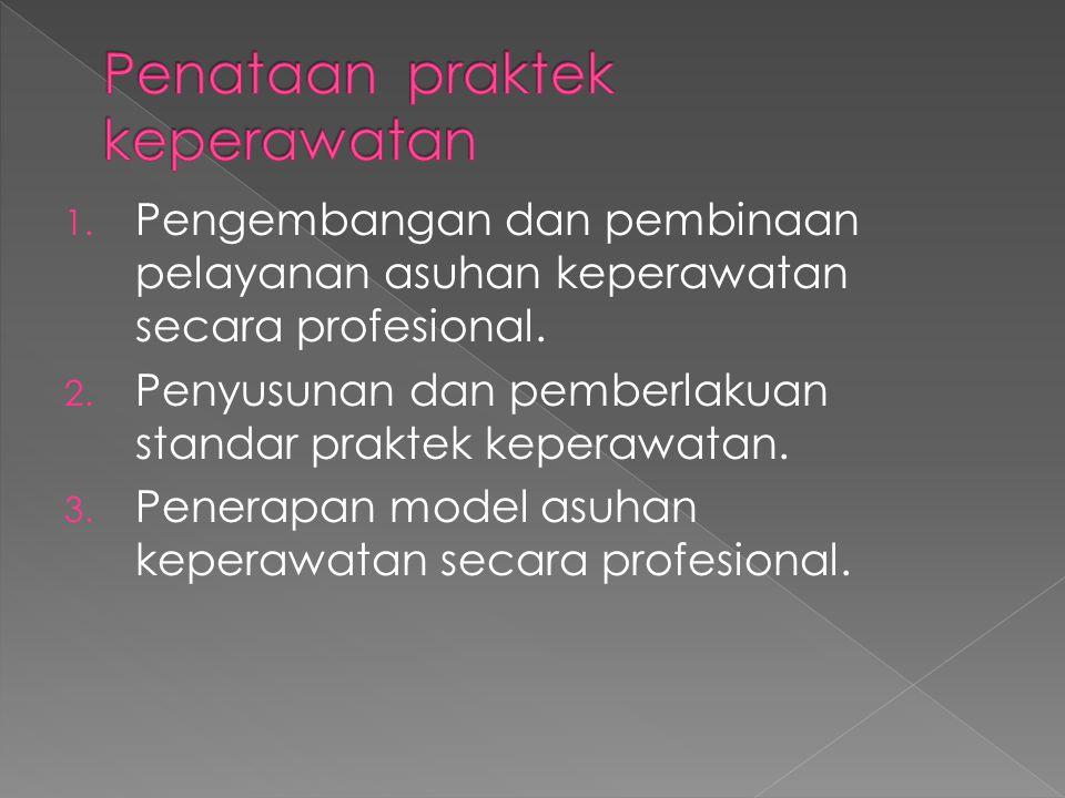 1. Pengembangan dan pembinaan pelayanan asuhan keperawatan secara profesional. 2. Penyusunan dan pemberlakuan standar praktek keperawatan. 3. Penerapa
