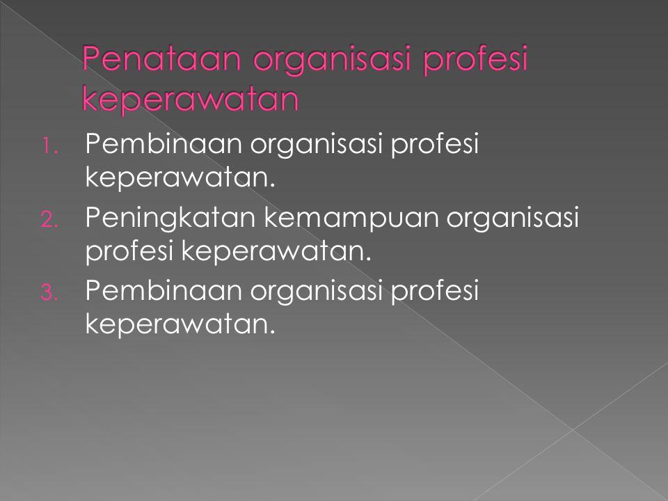 1. Pembinaan organisasi profesi keperawatan. 2. Peningkatan kemampuan organisasi profesi keperawatan. 3. Pembinaan organisasi profesi keperawatan.