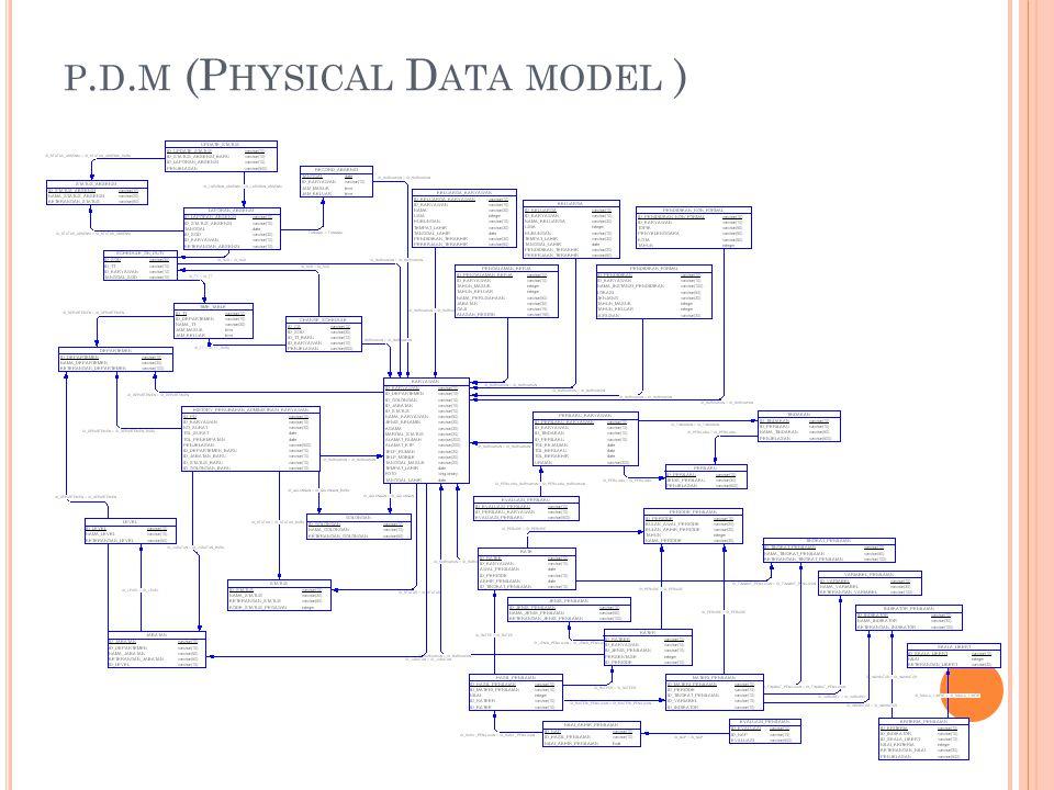 P. D. M (P HYSICAL D ATA MODEL )