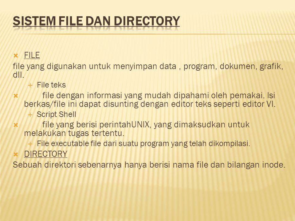  FILE file yang digunakan untuk menyimpan data, program, dokumen, grafik, dll.  File teks  file dengan informasi yang mudah dipahami oleh pemakai.