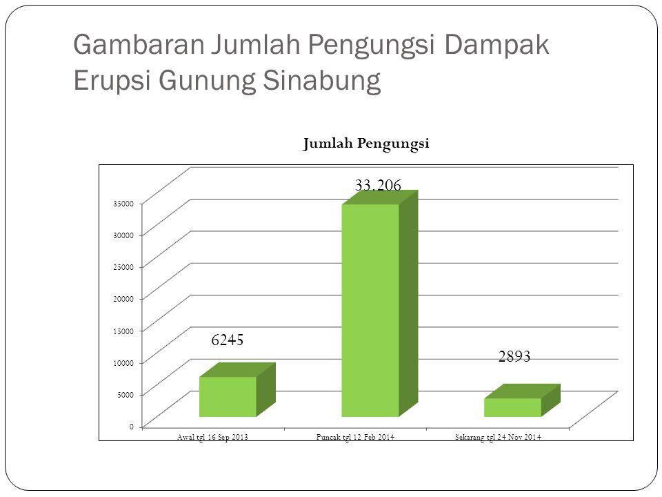 Gambaran Jumlah Pengungsi Dampak Erupsi Gunung Sinabung