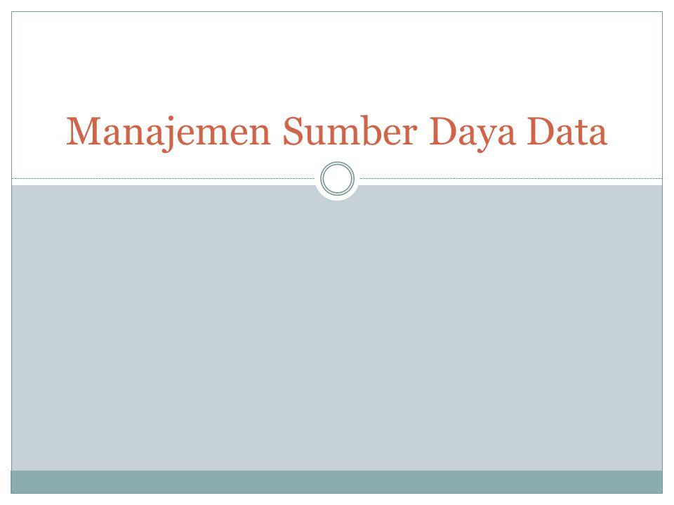 Manajemen Sumber Daya Data