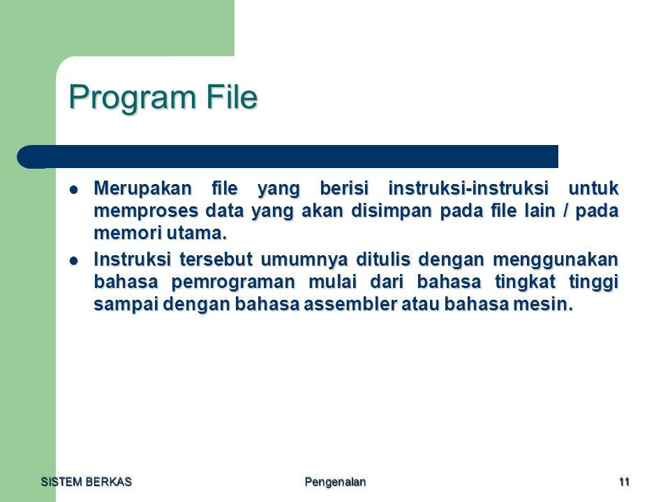 SISTEM BERKAS Pengenalan11 Program File Merupakan file yang berisi instruksi-instruksi untuk memproses data yang akan disimpan pada file lain / pada m