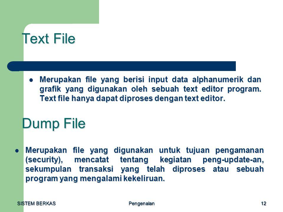 SISTEM BERKAS Pengenalan12 Text File Merupakan file yang berisi input data alphanumerik dan grafik yang digunakan oleh sebuah text editor program. Tex