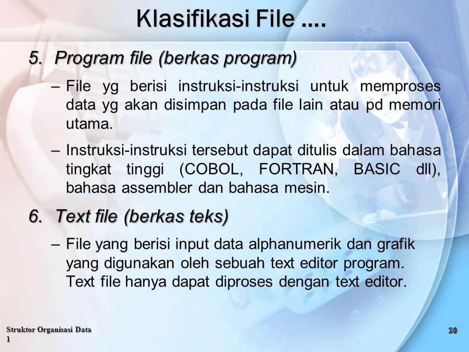 5.Program file (berkas program) –File yg berisi instruksi-instruksi untuk memproses data yg akan disimpan pada file lain atau pd memori utama.