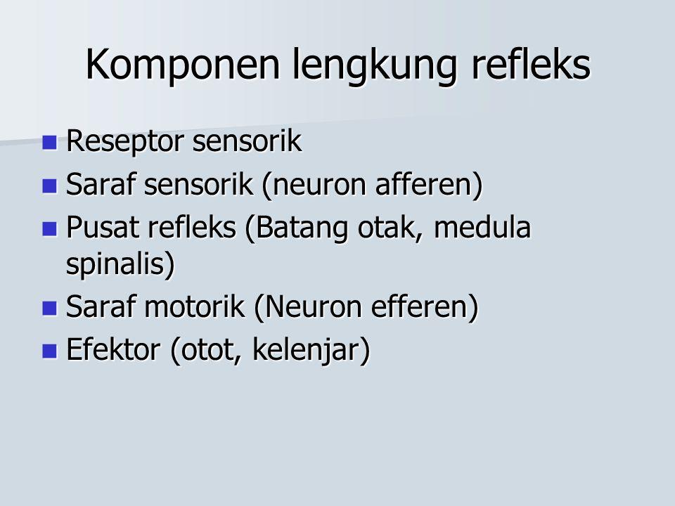 Pada excitatory synapse Kanal Na dan K postsinaps terbuka Kanal Na dan K postsinaps terbuka –Na masuk: beda konsentrasi dan muatan –K keluar: beda konsentrasi saja –Na masuk jauh lebih banyak Depolarisasi neuron postsynaps Depolarisasi neuron postsynaps –satu sinaps: tidak cukup untuk depolarisasi –beberapa sinaps: threshold tercapai  AP –disebut: excitatory postsynaptic potential (EPSP)