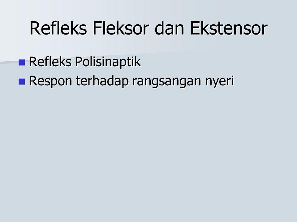 Refleks Fleksor dan Ekstensor Refleks Polisinaptik Refleks Polisinaptik Respon terhadap rangsangan nyeri Respon terhadap rangsangan nyeri